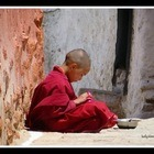 Thumbnail_teaching-monks-india